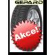 Protektor Gepard 165/70 R14 WINTER G-MAX 800 81T TL